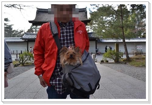 京都2DSC_0413