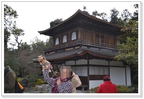 京都2DSC_0431