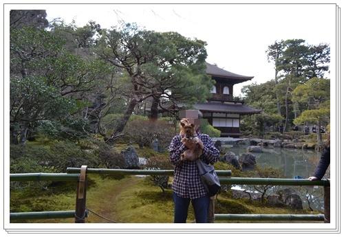 京都2DSC_0435