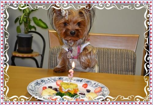 4歳誕生日DSC_0687