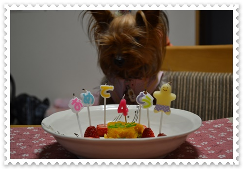 誕生日DSC_0786