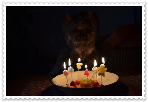 誕生日DSC_0787