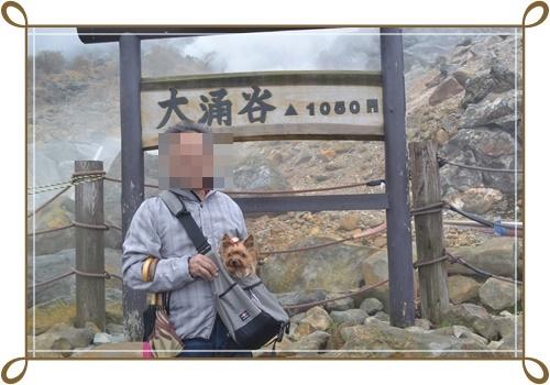箱根DSC_0803-20140421