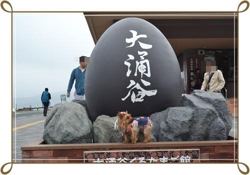 箱根DSC_0809-20140421