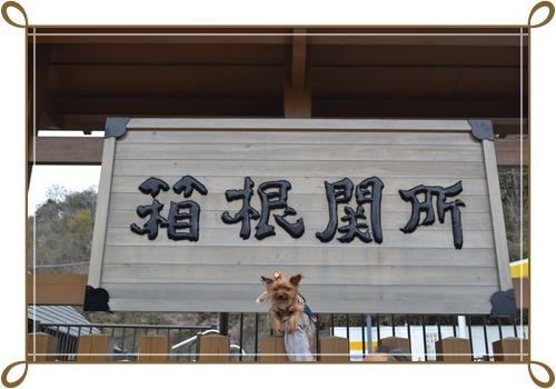箱根DSC_0810-20140421
