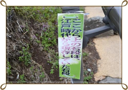 箱根DSC_0817-20140421