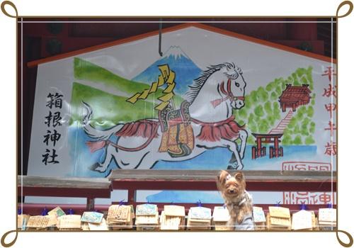 箱根DSC_0874-20140420