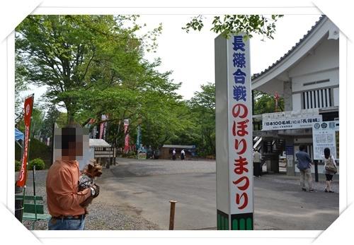 長篠DSC_0992-20140503
