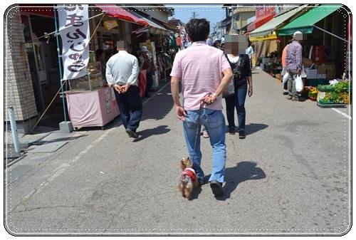 木曽三川公園DSC_0027-20140511