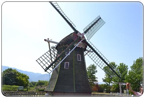 木曽三川公園DSC_0045-20140511