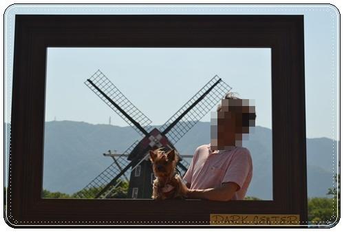 木曽三川公園DSC_0046-20140511