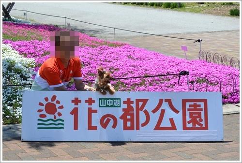 花の都公園DSC_0097-20140517