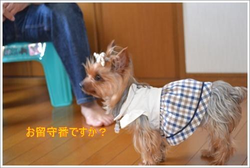 運動会DSC_0201-20140525