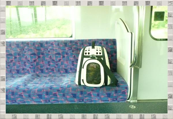 電車P1040066