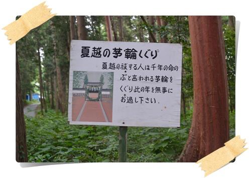 茅くぐりDSC_0496-20140615