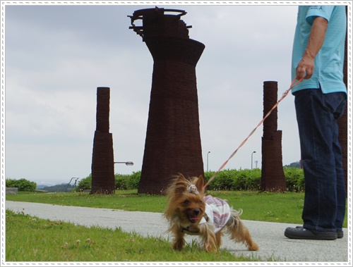 岡崎総合公園IMGP0058-20140621