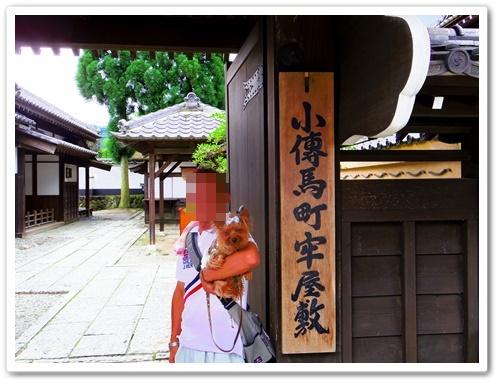 日光江戸村IMGP0441-20140721