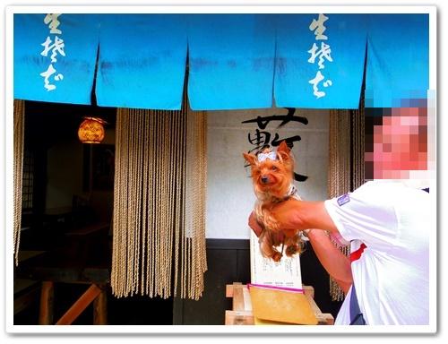 日光江戸村IMGP0446-20140721