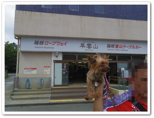 箱根IMGP0554-20140722