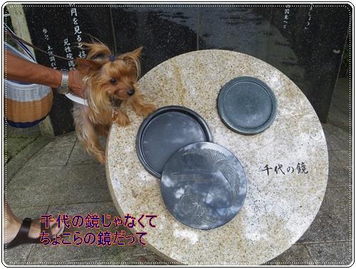 岐阜城IMGP0741-20140830