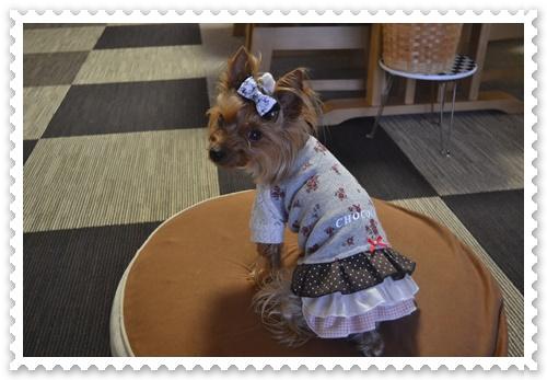 ぷうママさんのお洋服DSC_0730-20140819