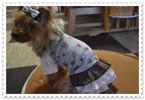 ぷうママさんのお洋服DSC_0733-20140819