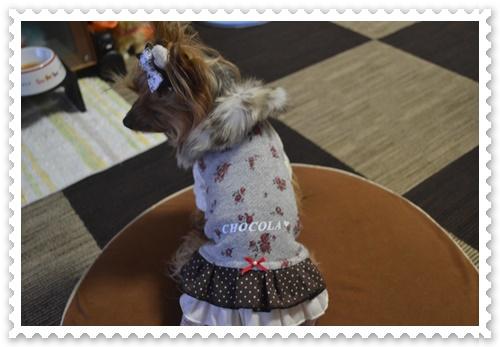 ぷうママさんのお洋服DSC_0734-20140819