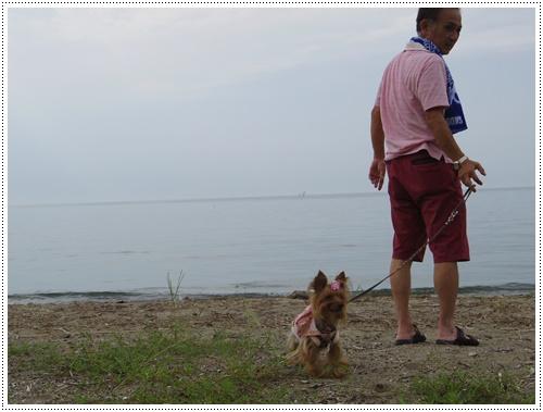 琵琶湖IMGP0835-20140906