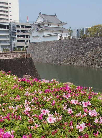つつじ・さつき咲く駿府城公園-1