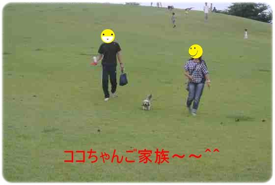 DSC_4853.jpg