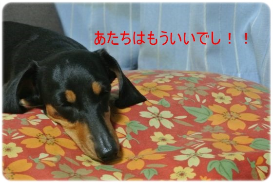 DSC_5744.jpg