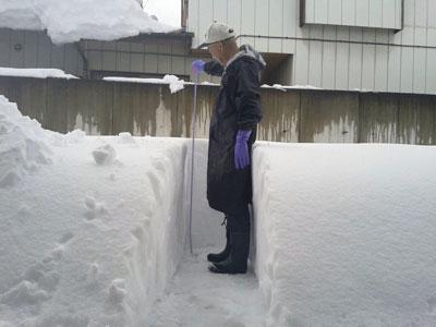 積雪94cm