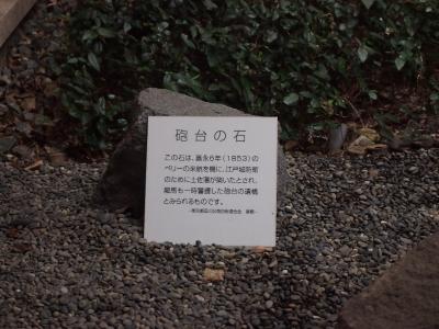 20140320_124.jpg