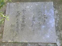 八瀬尾の滝0311_9