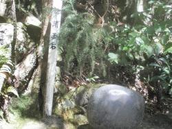 八瀬尾の滝0311_18
