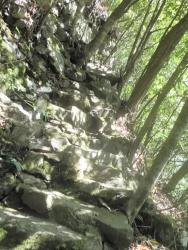 八瀬尾の滝0311_19