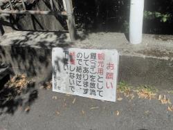 八瀬尾の滝0311_22