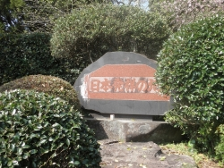 笠狭宮跡 桜満開 CBR250R 3
