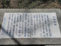 笠狭宮跡 桜満開 CBR250R 10