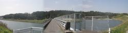 桜満開こせ渓谷 こせの滝魚道 CBR250R 0
