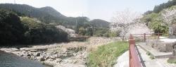 s-桜満開こせ渓谷 こせの滝魚道 CBR250R 10