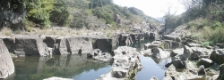 s-桜満開こせ渓谷 こせの滝魚道 CBR250R 12