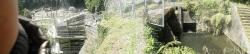 s-桜満開こせ渓谷 こせの滝魚道 CBR250R 18