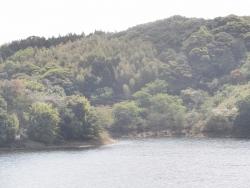 さつま湖0405CBR250R_7