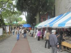 s-和気神社 和気公園藤まつり2014_14