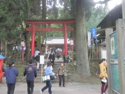 s-和気神社 和気公園藤まつり2014_15