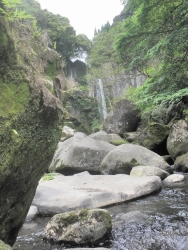 s-和気公園藤まつり 犬飼の滝2014_4