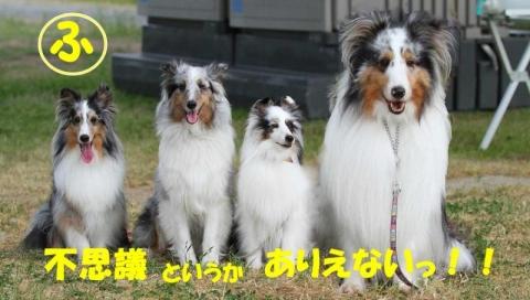 20130608+JFF邱エ鄙剃シ喟convert_20140215094540