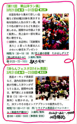 s-429-1花新聞