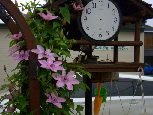 s-476-1 時刻(とき)を忘れる庭